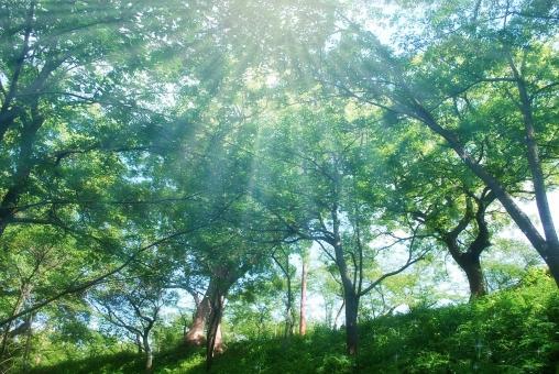 受験うつの克服法『生活リズムを改善する』