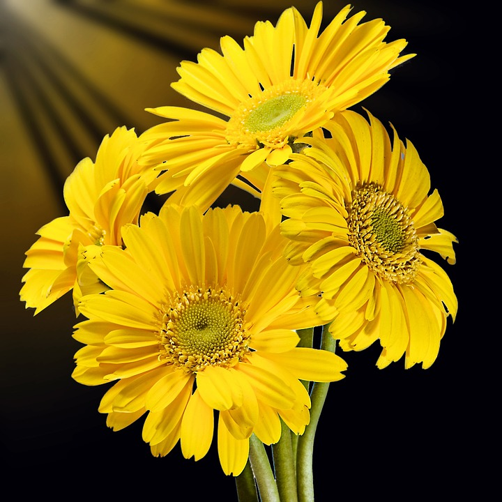 勉強中の発想力を上げるなら黄色