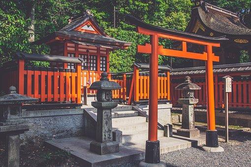 阪大の日本史B対策について