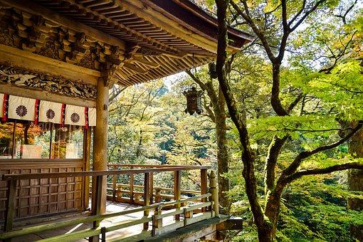 名古屋大学の古文対策について