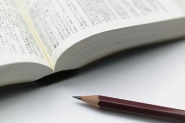 入試現代文へのアクセスの特徴「現代文の語句も掲載」