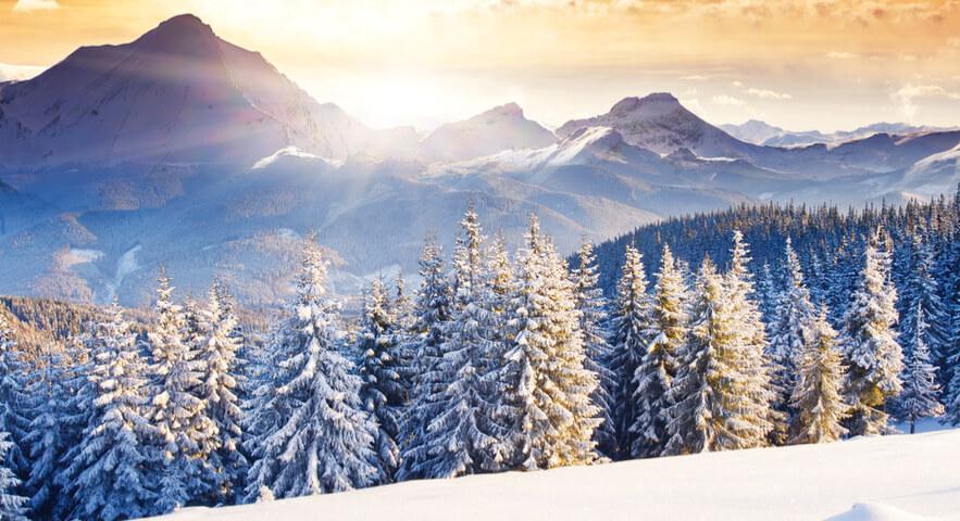 合格する高3生の冬休みの勉強時間